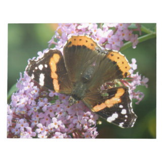 Red Admiral Butterfly and Buddleia Notepad