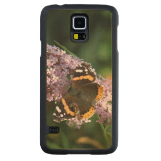 Red Admiral Butterfly and Buddleia Wood Phone Case Carved® Maple Galaxy S5 Slim Case