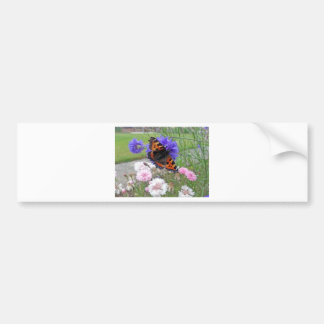 Red Admiral Butterfly Bumper Stickers