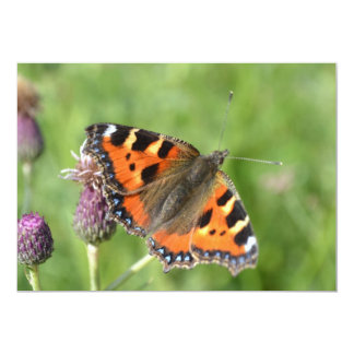 Red Admiral Butterfly Invitation
