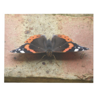Red Admiral Butterfly Notepad