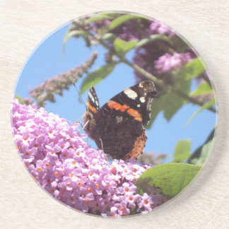 Red Admiral Butterfly on Buddleia Beverage Coasters