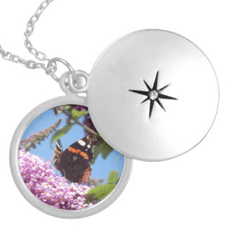 Red Admiral Butterfly on Buddleia Locket Necklace