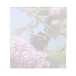 Red Admiral Butterfly On Buddleia Memo Pads