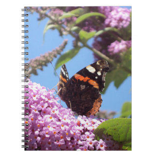 Red Admiral Butterfly On Buddleja Spiral Note Books