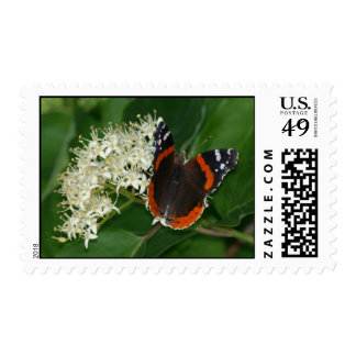 Red Admiral Butterfly Stamps
