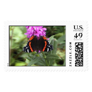 red admiral butterfly stamp