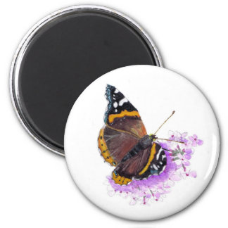 Red admiral. refrigerator magnets
