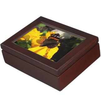 Red Admiral on Black Eyed Susan Memory Box