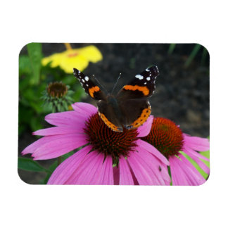 Red Admiral on Cone Flower Magnet