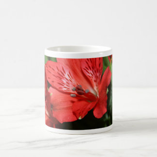 Red Alstroemeria Flower Mug