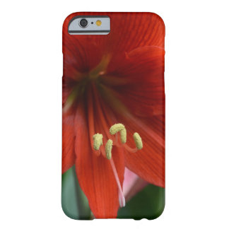 Red Amarylis Barely There iPhone 6 Case