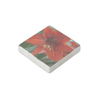 Red Amarylis Stone Magnet