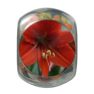 Red Amarylis Glass Candy Jars