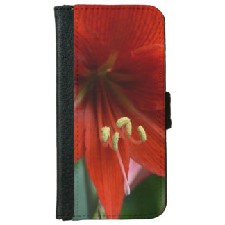 Red Amarylis iPhone 6 Wallet Case