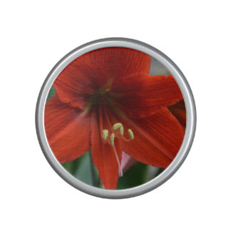 Red Amarylis Bluetooth Speaker