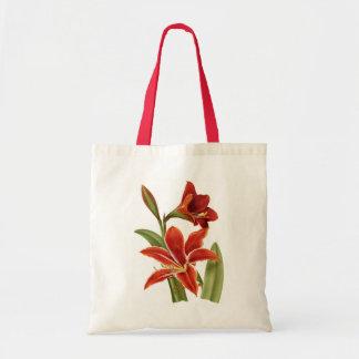 Red Amaryllis Botanical Print Tote Bag