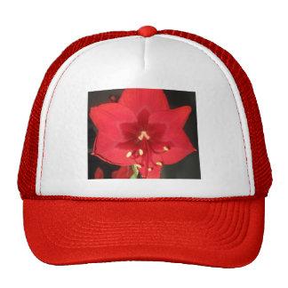 Red Amaryllis Flower Hat