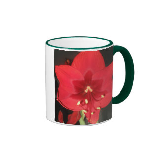 Red Amaryllis Flower Mug
