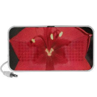 Red Amaryllis Flower Speaker