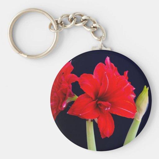 Red Amaryllis Key Chains