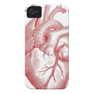 Red Anatomical Heart iPhone 4 Case-Mate Case