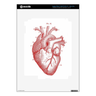 Red Anatomical Heart Decal For iPad 3