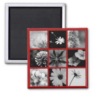 Red And black And White Magnet