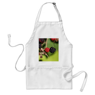 Red and black blackberry fruits. adult apron