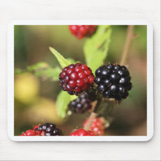 Red and black blackberry fruits. mouse pad