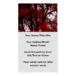 Red and Black Double-Sided Standard Business Cards (Pack Of 100)