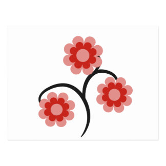 Red and Black Daisies Postcard