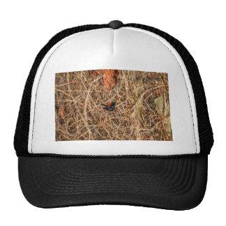 RED AND BLACK FINCH RURAL QUEENSLAND AUSTRALIA TRUCKER HAT
