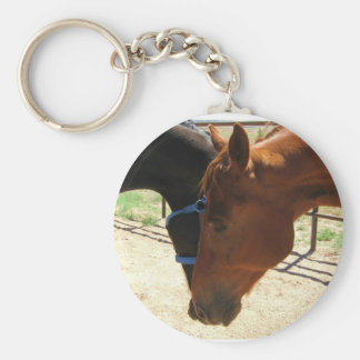 Red and Black Horse Friends Share a Secret Basic Round Button Keychain