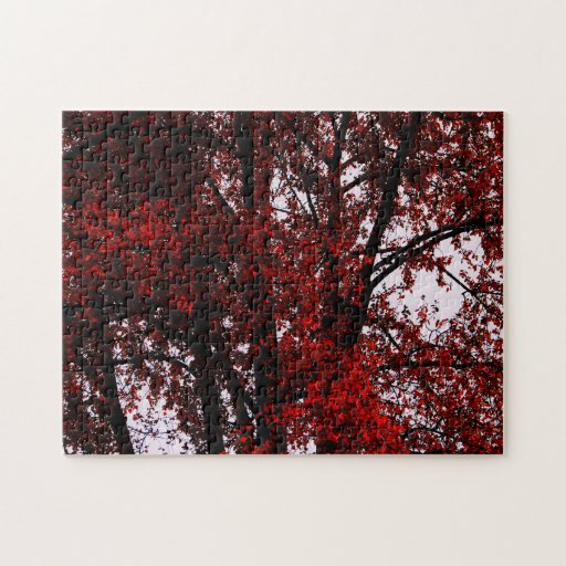 Red and Black Puzzle