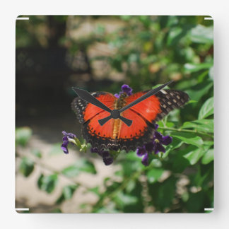 Red and Black Winged Butterfly Square Wall Clock