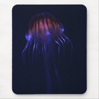 Red and Blue Jellyfish Mouse Pad