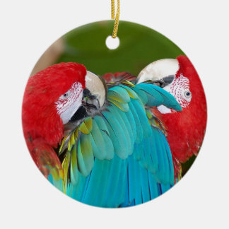 Red and blue macaw parrot print ceramic ornament