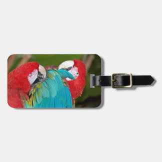 Red and blue macaw parrot print travel bag tag