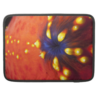 Red and blue sea apple sleeve for MacBooks