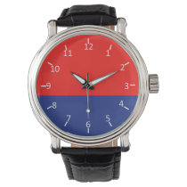 Red and Blue Watches