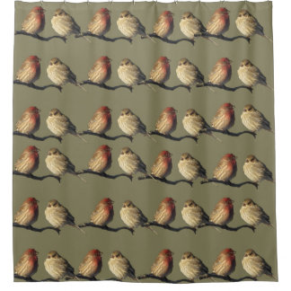 Red and Brown House Finch Birds Shower Curtain