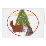 Red and Calico Persian Cats Christmas Greeting Cards