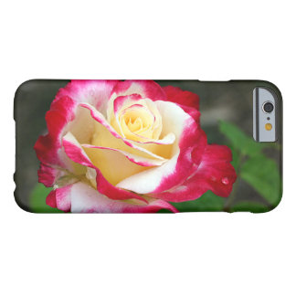 Red and cream rose barely there iPhone 6 case