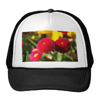 Red and filled cultivated daisies trucker hat