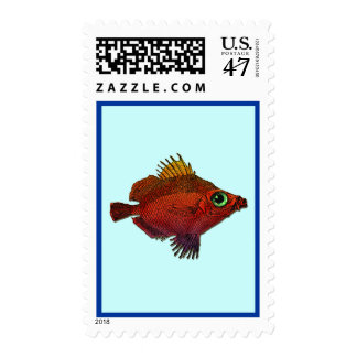 Red and Gold Fantasy Discus Fish Postage