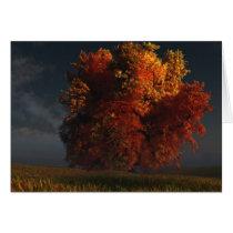 autumn, tree, prairie, clouds, landscape, desktop wallpaper, Card with custom graphic design