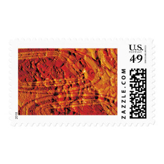 Red and Gold Paint Field Postage Stamp