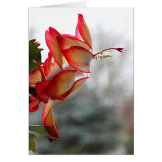 Red and Golde Christmas Cactus Card