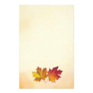 Red and golden maple autumnal leaves Stationery